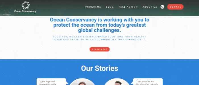 best-nonprofit-websites-colors