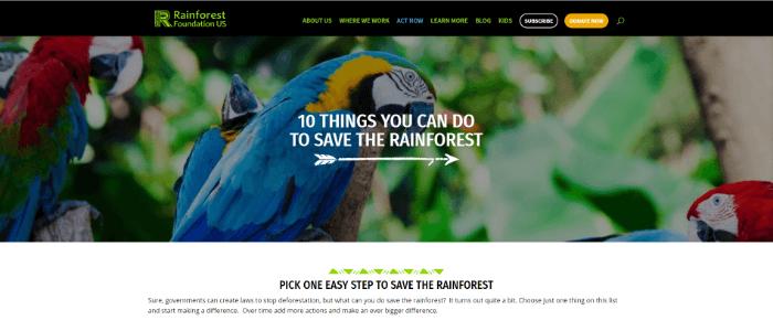 best-nonprofit-websites-act-now