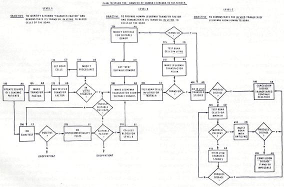 Flow Chart 6