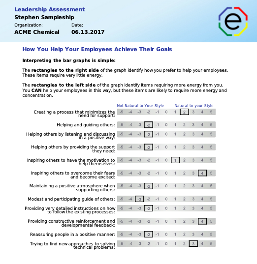 Extended DISC Leadership Assessment How to Help your employees achieve their goals section