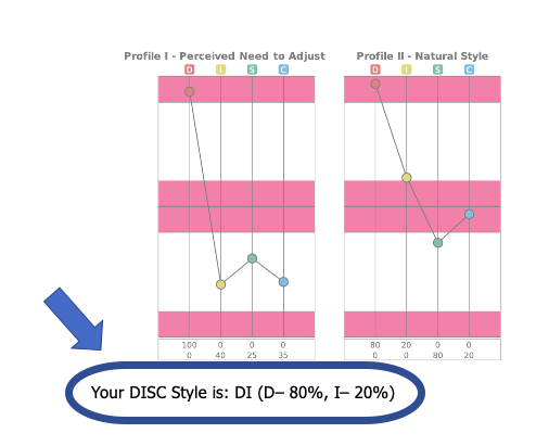 Extended DISC Profiles focusing on Your DISC Style is statement