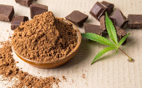 Chocolate, Cocoa powder, & Cannabis