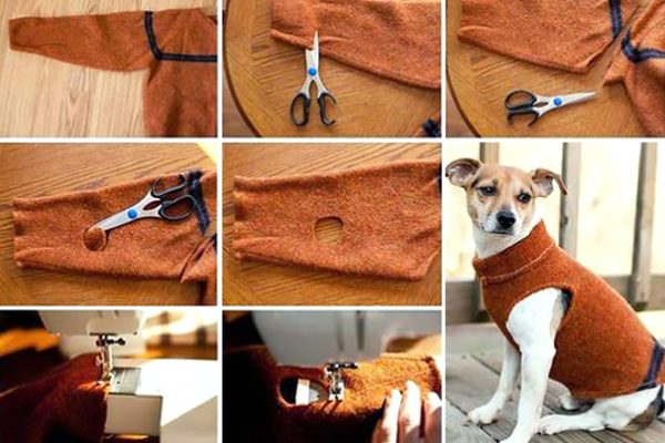 Oggi reciclar ropa para perros